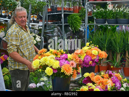 SUNDAY FLOWER MARKET, COLUMBIA ROAD, BETHNAL GREEN,TOWER HAMLETS, EAST LONDON. AUGUST 2018. The colourful Sunday morning street Flower Market - Stock Image