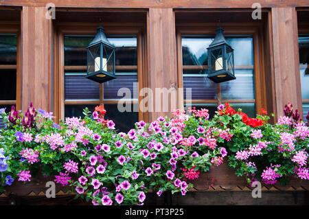 Windowbox of a chalet in the Lötschental Valley, Valais, Switzerland - Stock Image