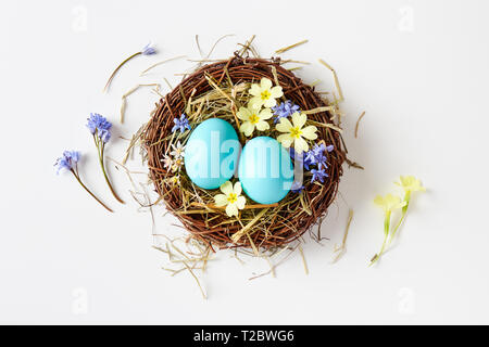 Easter decoration with nest, eggs and spring flowers. Blue Easter eggs in nest with delicate spring blossoms. - Stock Image