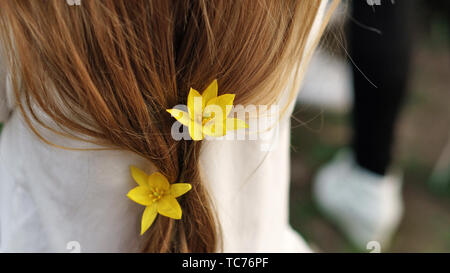 Close up view of young woman's hair with yellow flowers within. Spring. Unity with nature. Minimalism - Stock Image
