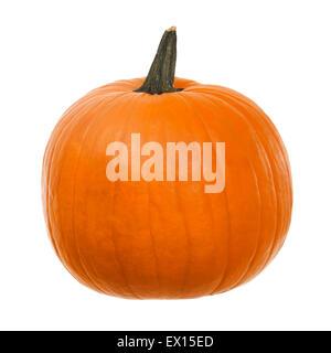 Stock image of orange pumpkin over white background - Stock Image