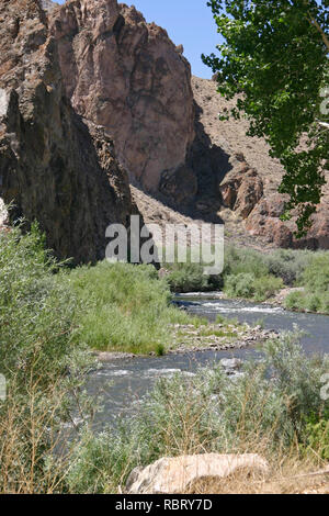 A river runs through a rocky, barren, desert canyon surrounded by thriving plant life in the western USA - Stock Image