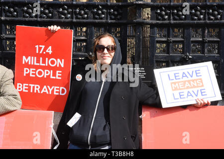 A Brexiteer demonstrates outside the Houses of Parliament in favour of Brexit, Westminster, London. UK - Stock Image