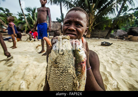 Boy with fish on the Turtle Islands, Sierra Leone. - Stock Image