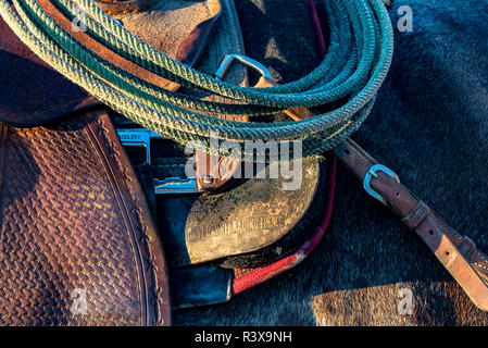USA, California, Parkfield, V6 Ranch detail of a saddle and lasso - Stock Image
