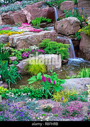 Colourful alpine Rockery and waterfall for a country garden - Stock Image
