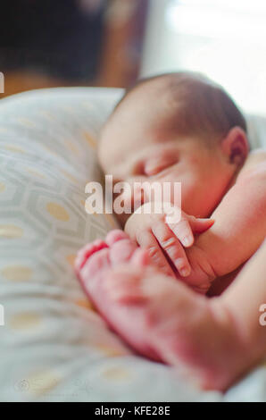 Newborn human baby asleep on a pillow - Stock Image