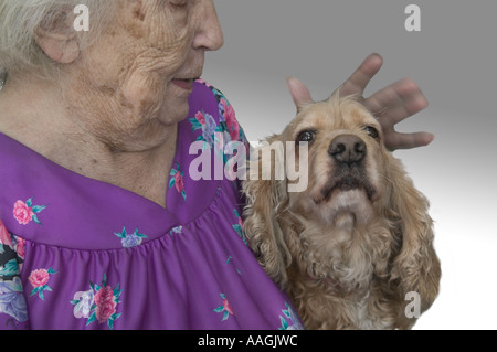 An elderly woman and her cocker spaniel - Stock Image