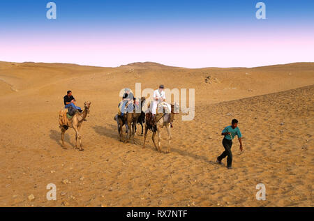 Desert and tourists. Giza. Cairo. Egypt. Africa. - Stock Image