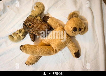 Well-worn pet toys sharing time together on a sheet - Stock Image