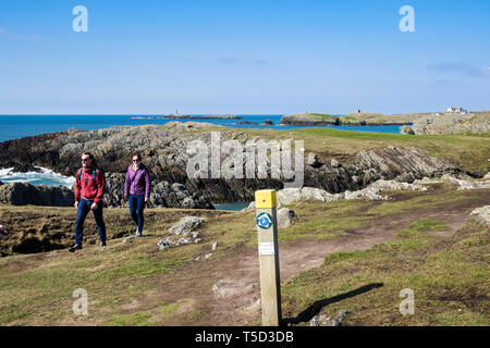 Two people walking on the Isle of Anglesey Coastal Path from Rhoscolyn, Isle of Anglesey, Wales, UK, Britain - Stock Image