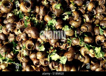 Garden snails, street food - Stock Image