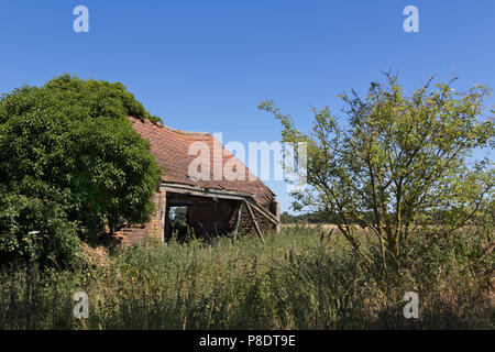 A charming, derelict barn on a bright summers day, in a rural area near Heydon, Norfolk, UK. - Stock Image