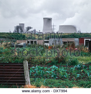 Allotment - Stock Image