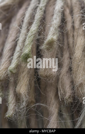 Macro photo of frayed ends of a thick natural fibre rope. - Stock Image