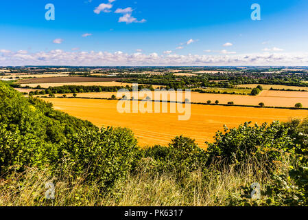 Early morning panorama from Sharpenhoe outcrop, Bedfordshire, UK - Stock Image