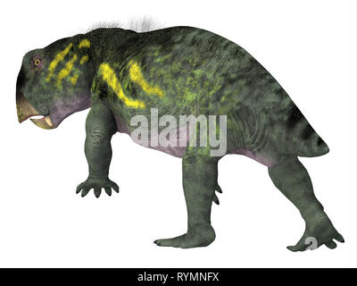 Lystrosaurus Dinosaur Tail -Lystrosaurus was a dicynodont therapsid herbivore dinosaur that lived in several countries during the Triassic and Permian - Stock Image