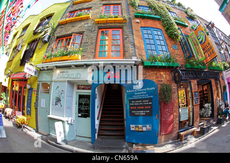 Neal's Yard in London with spectacular colours and flora everywhere through fisheye lens - Stock Image