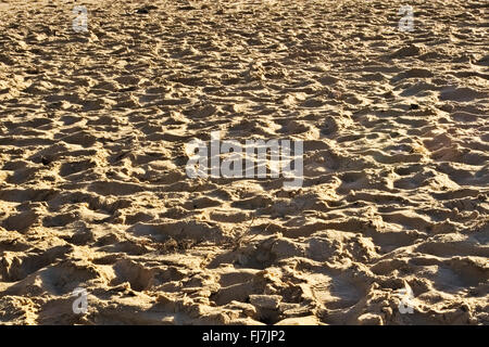 Trampled yellow beach sand at the end of the day. - Stock Image