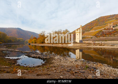 Rhine with low water, near Bingen. On the right the Mäuseturm (Mouse Tower) and the Burg Ehrenfels (Ehrenfels Castle). - Stock Image