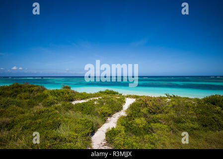 British Virgin Islands, Anegada. Bones Bight Beach - Stock Image