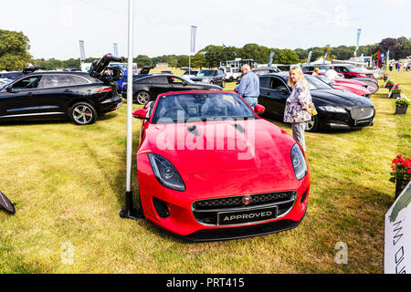 Looking for new car, car hunting, car shopping, choosing new car, new car at garage, garage forecourt, buying new car, new car, Jaguar, buying, choose - Stock Image