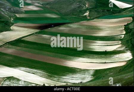 famous lentil fields on the Piano Grande in the Sibillini National Park near Castelluccia ,Le Marche ,Italy - Stock Image