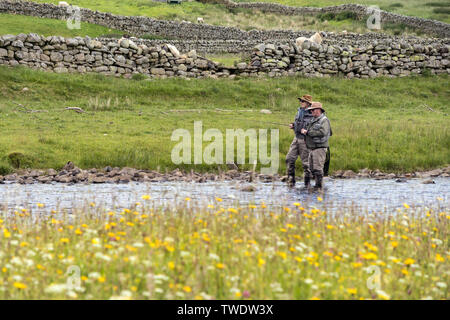 Fly Fishing on the River Tees, Viewed from the Pennine Way at Cronkley Bridge, Forest-in-Teesdale, County Durham, UK - Stock Image