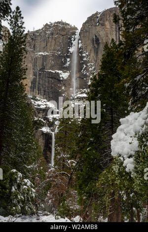 A view of Yosemite  Falls from the valley, in the winter, featuring accumulated snow, California, USA - Stock Image