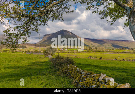 The west face of Benbulben Mountain, Part of the Dartry Mountains, County Sligo, Ireland - Stock Image