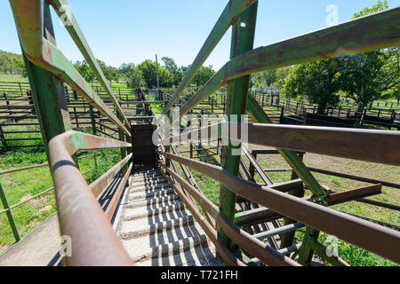 View down a cattle ramp, South West Queensland, QLD, Australia - Stock Image