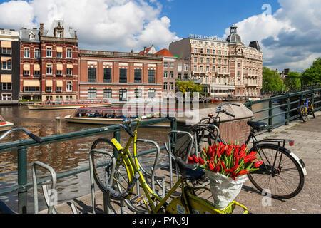 bicycle with tulips, Amsterdam, Netherlands - Stock Image
