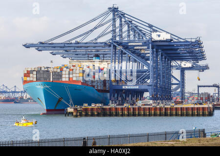 Loading / unloading container ship at Felixtowe port. Tug boat near ship. - Stock Image
