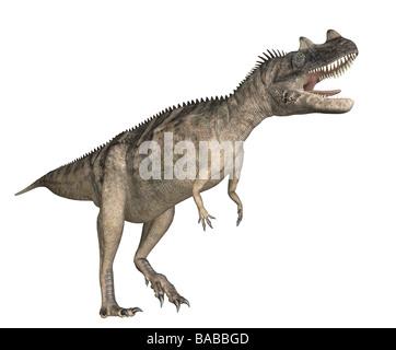 dinosaur Ceratosaurus - Stock Image
