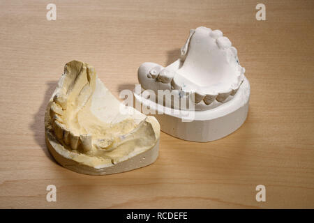 The plaster moulds for making a set of false teeth - Stock Image