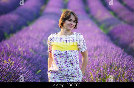 Provence, Francce. Lavender field summer sunset landscape near Valensole. - Stock Image
