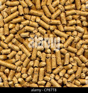 Wood pellets, pressed hard wood for heating, Holzpellets - Stock Image