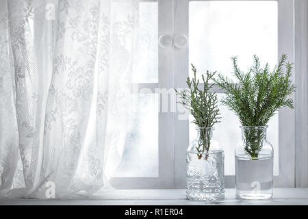 Fir branch in vase near window.Christmas decoration - Stock Image
