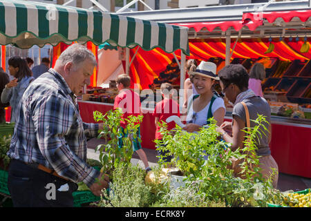 FARMER'S MARKET AT PLAVE GUILLAUME II TOWN SQUARE, LUXEMBOURG CITY, LUXEMBURG, LUXEMBOURG - Stock Image