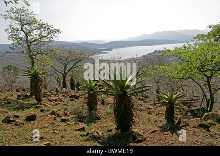 The View Down the Nkwalini Valley from Shakaland Zulu Village, Kwazulu Natal, South Africa. - Stock Image