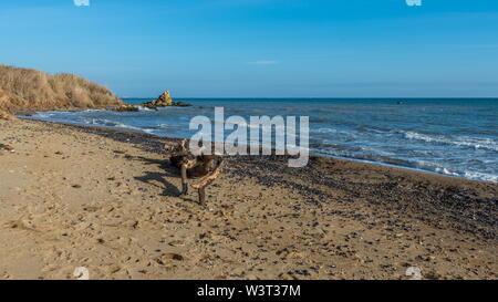 Sunny autumn day on the seashore near the village of Fontanka, Odessa region, Ukraine - Stock Image