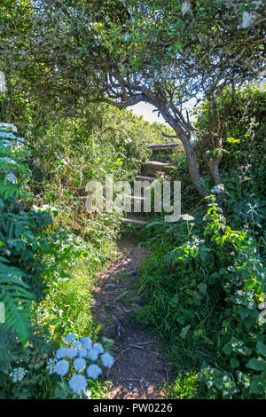 A typical Cornish stile near to St. Ives, Cornwall, England, UK - Stock Image
