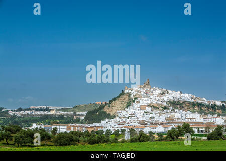 Whitewashed houses on hill, Arcos de la Frontera, Spain - Stock Image