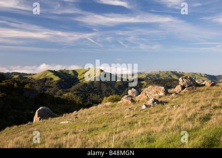 Azalea Hill along the Fairfax Bolinas Road Marin County California USA - Stock Image