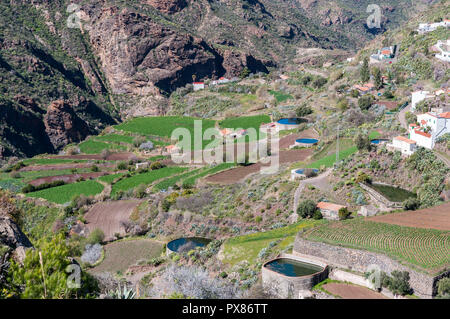 Irrigation ponds in terraces. Photo taken in the town of Tejeda, in the interior of the Gran Canaria Island, Canary Islands, Spain - Stock Image