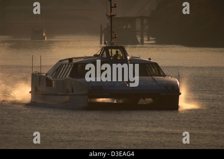 Brisbane citycat ferry on the Brisbane River Queensland Australia - Stock Image