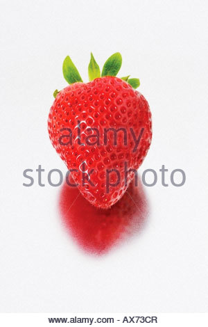 Still life studio image of a strawberry. - Stock Image