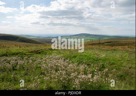 Scenic view of the Peak District National Park on the A537 from Macclesfield to Buxton - Stock Image