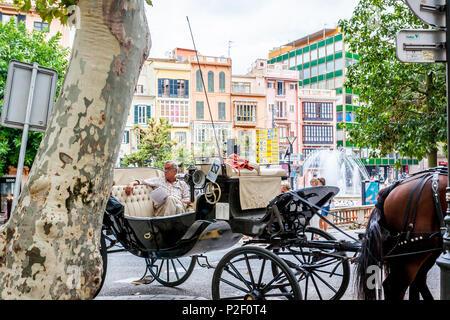 Horse carriage in the old town of Palma, historic city centre, Ciutat Antiga, Palma de Mallorca, Majorca, Balearic Islands, Medi - Stock Image