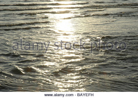 Sunlight at evening on sea - Stock Image